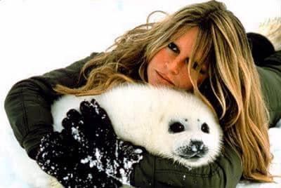 Brigitte Bardot la chasse aux blanchons